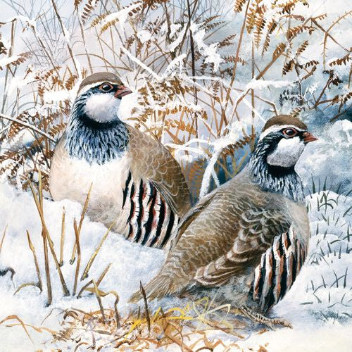Museums and Galleries - Partridge In The Snow x 8