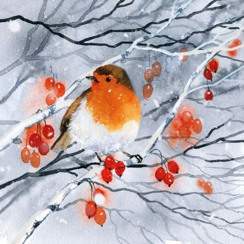 Museums and Galleries - Robin, Snow And Berries x 8