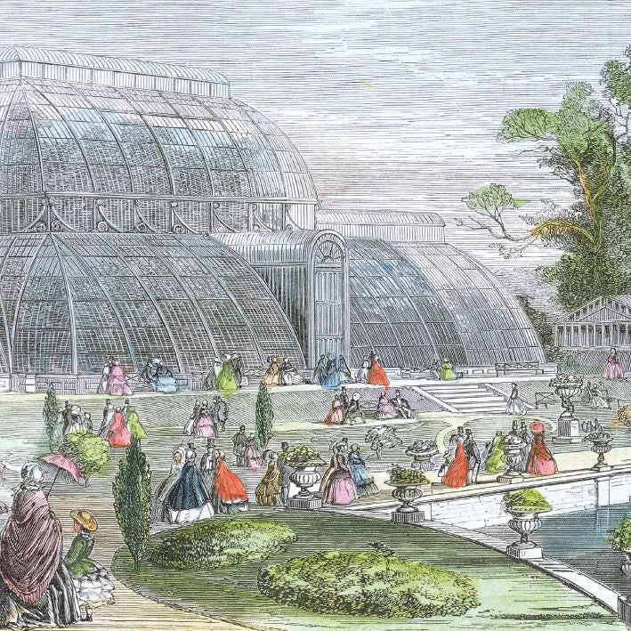 Museums and Galleries - Kew Gardens Palm House