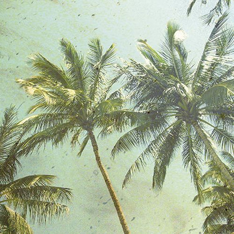 Mindfulness - Vintage Palm Trees