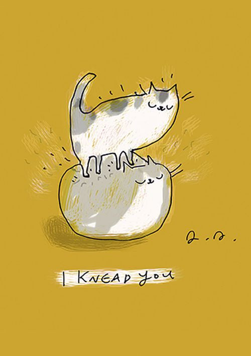 Jamie Shelman - I Knead You