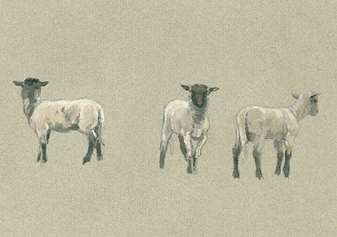 Alfred Parsons - Three sheep