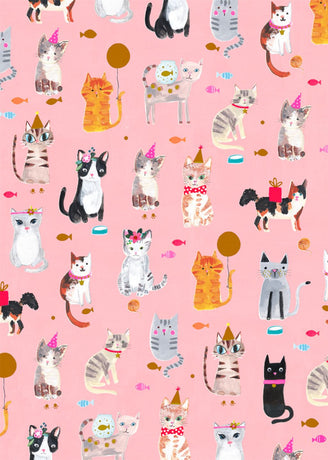 Glick - Pink Cat Wrap 4M (Collection & Delivery)