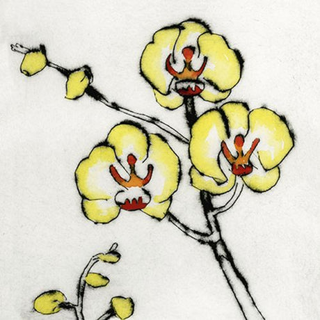 Richard Spare - Lemon Orchid