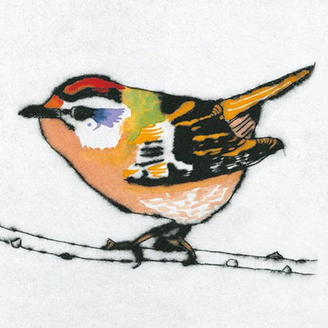 Richard Spare - Feisty Firecrest