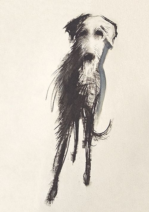 Sally Muir - Lurcher