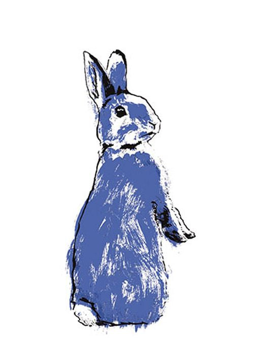 Tiff Howick - Blue Rabbit