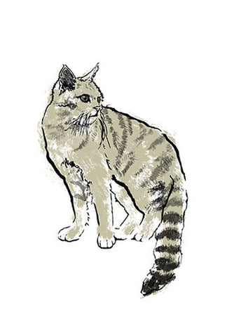 Tiff Howick - Scottish Wildcat