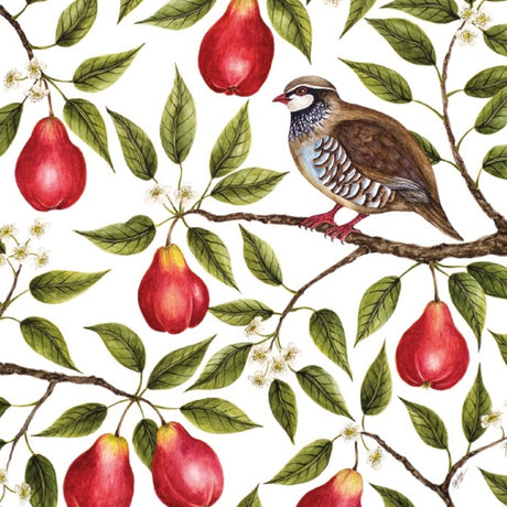 Museums and Galleries - Partridge in a Pear Tree x 5