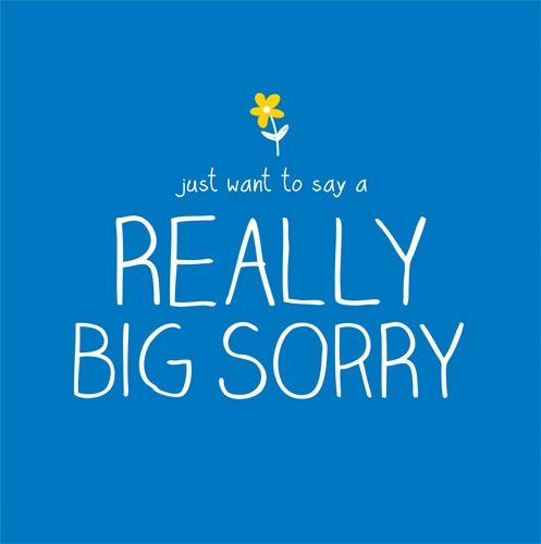 Big Sorry