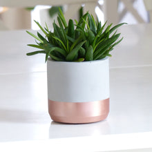 Load image into Gallery viewer, ProductImageAltText_pot dinard rosegold_2