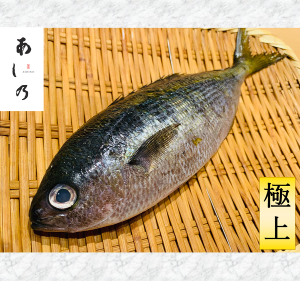 TAKABE(Blue Spotted Fish) Himono タカベ干物