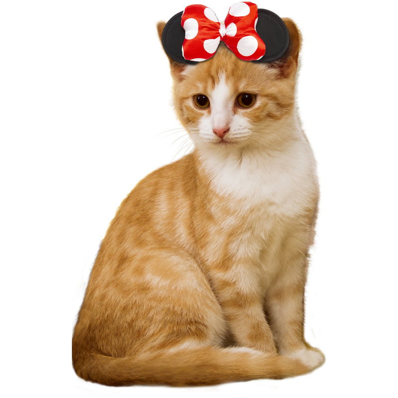 Minnie Mouse Cat Costume - World Pet Lovers