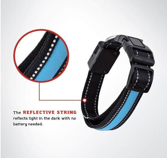 USB and Solar Charge Reflective Led Dog Collar - World Pet Lovers