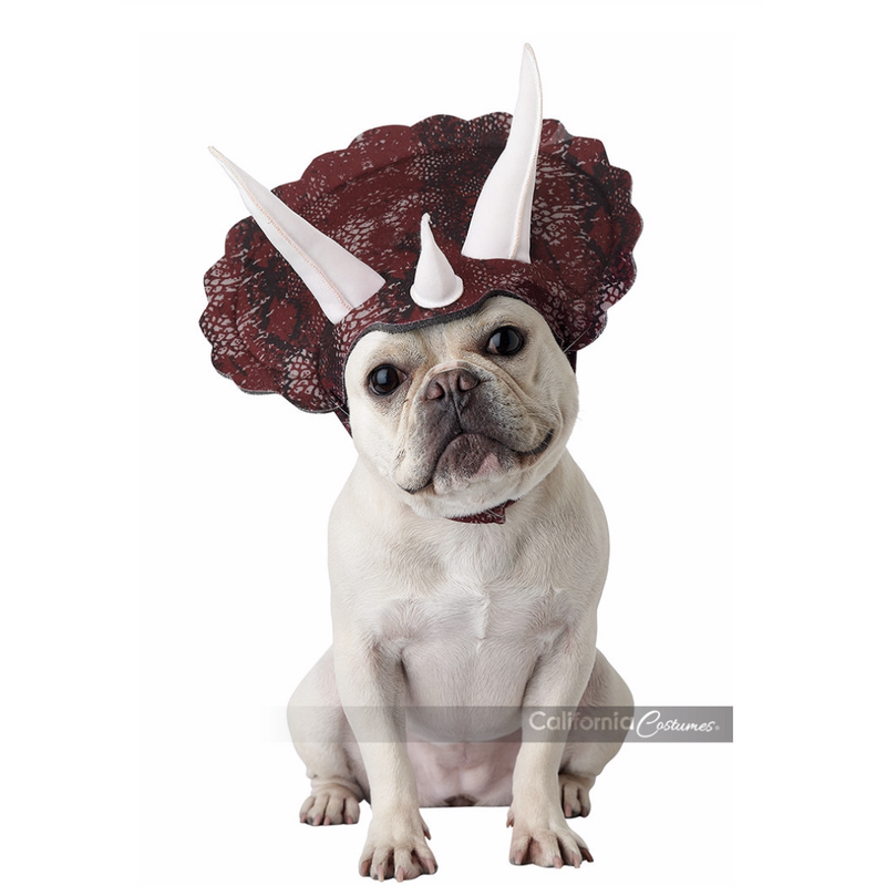 Triceratops Pet Costume - World Pet Lovers