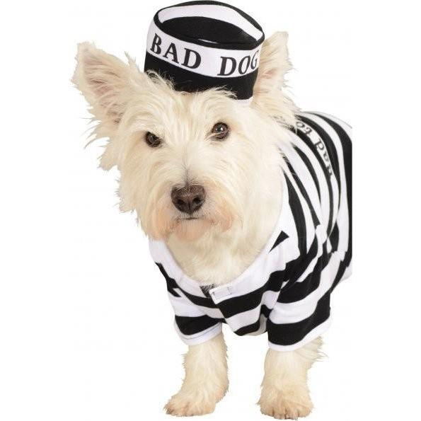 Prisoner Pet Costume - World Pet Lovers