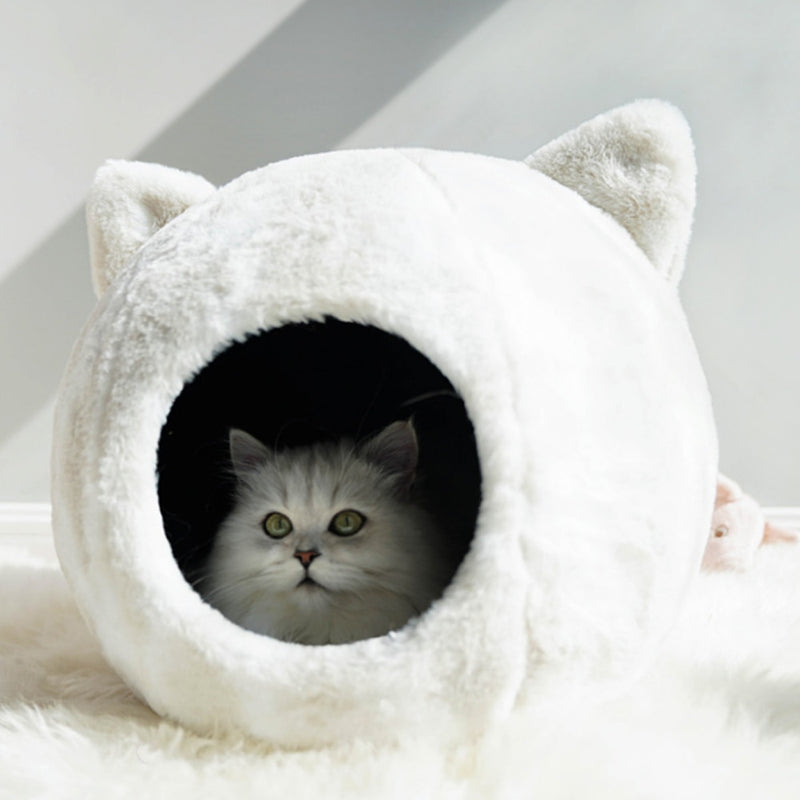 Cat House - World Pet Lovers
