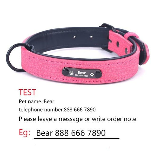 Personalized Dog Collar With Leather Padded Pet ID - World Pet Lovers