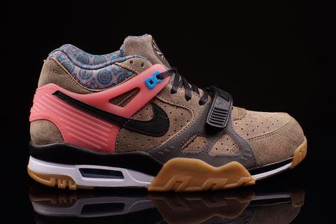 Nike Air Trainer 3 PRM Super Bowl 2015