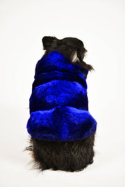 Manteau en chinchilla bleu