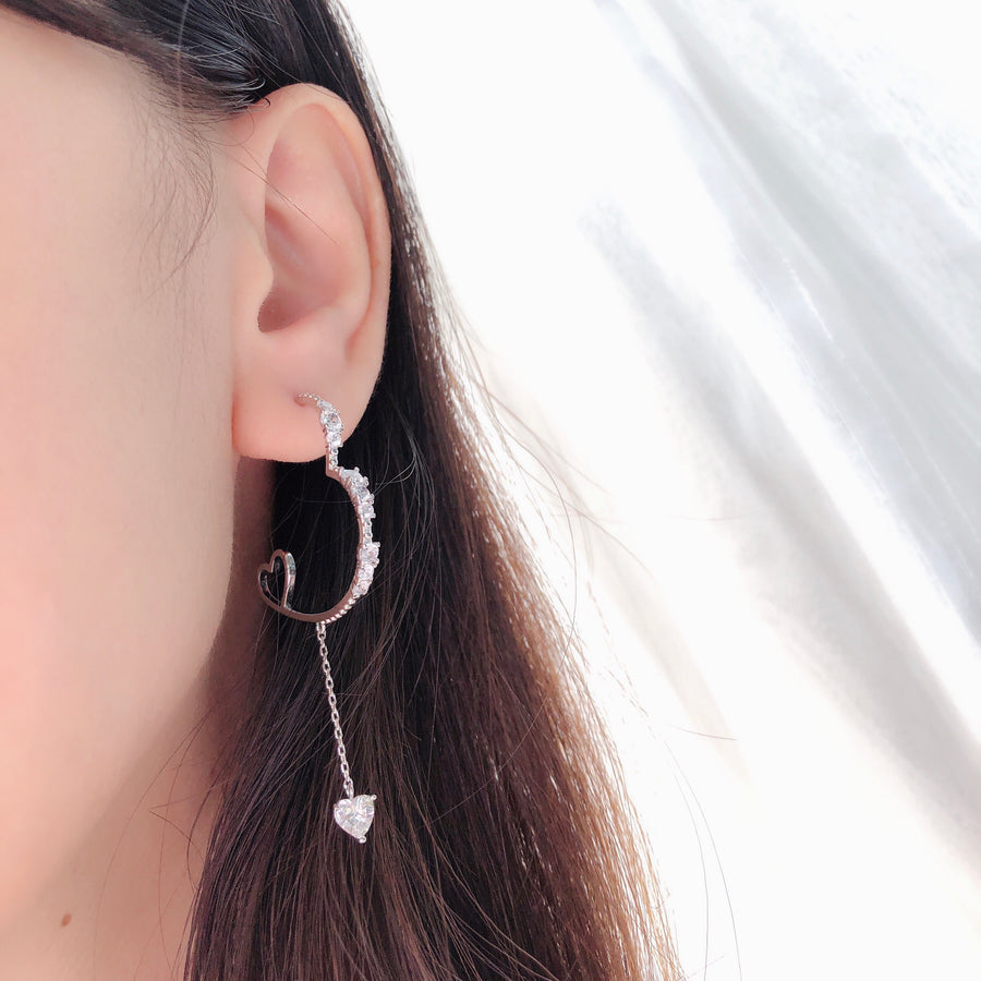 Silver Precious Love Earrings