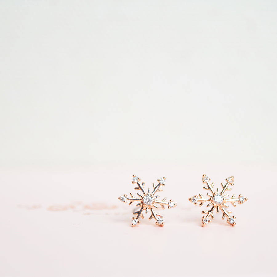 Korea Made Earrings Petite Stud Cubic Zirconia 925 Silver Daily Wear Anting-Anting Korean Fashion Stylish Resin Clip On Earrings Unique Gift For Bridesmaid