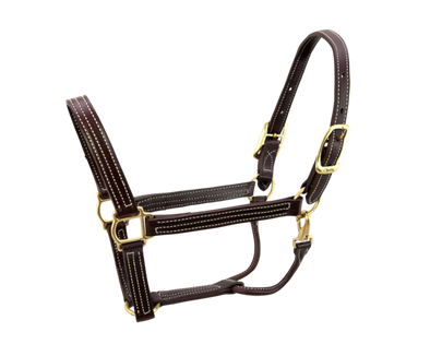 Walsh British Halter