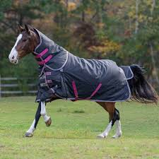 Shires Highlander Plus 300g Turnout Blanket