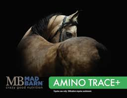 Mad Barn AminoTrace+ Pellet 5kg