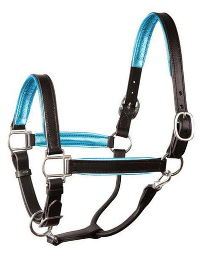 Leather Halter Coloured Padding