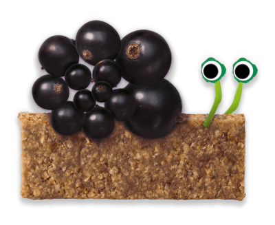 Blackcurrant Soft Oaty Bars Organimal