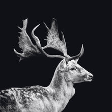Load image into Gallery viewer, Schilderij-Dark Deer-PosterGuru