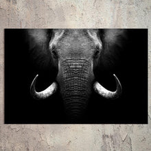 Afbeelding in Gallery-weergave laden, Schilderij-Olifant Close Up-PosterGuru