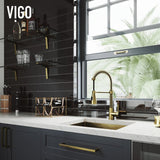 VIGO Brant Pull-Down Spray Single Hand Kitchen Faucet - LUXLLEY