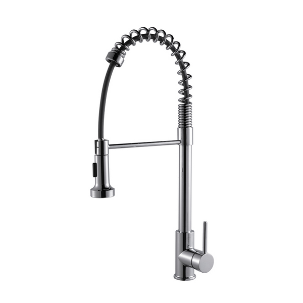 LEXORA Lanuvio Brass Kitchen Faucet w/ Pull Out Sprayer