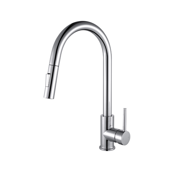 LEXORA Olivi Brass Kitchen Faucet w/ Pull Out Sprayer