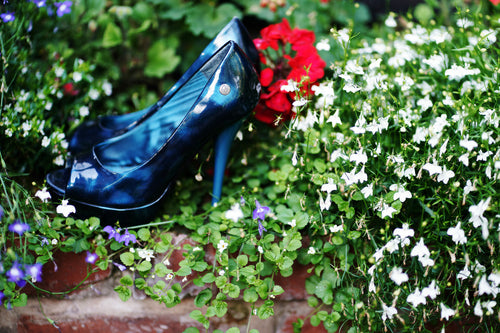 pair of blue high heeled ladies shoes sitting in a flower bed, surrounded by red and purple flowers