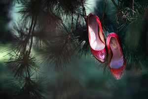 pair of ruby coloured ladies high heeled shoes hung from branch of a green mistletoe tree