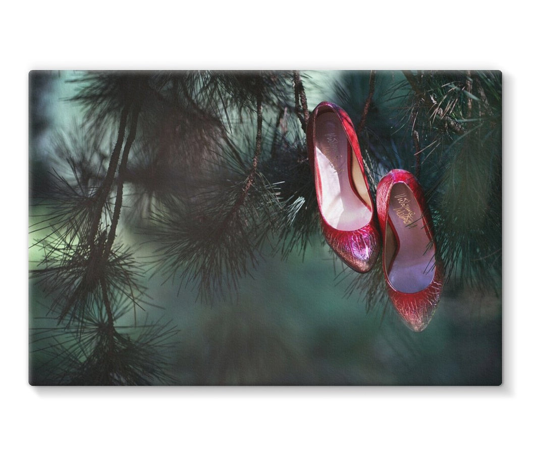 Canvas print with black border of pair of ruby coloured ladies high heeled shoes hung from branch of a green mistletoe tree