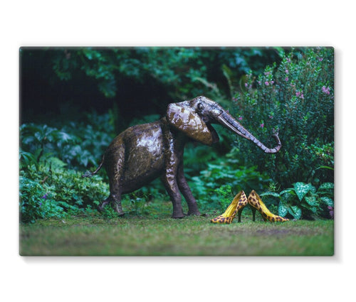 canvas print with black border of pair of leopard print ladies high heals shows, adjacent to a garden ornament of an elephant.