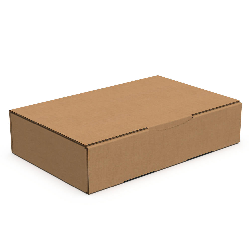 Eco Delivery Box S1 (Bundle of 20 pcs)