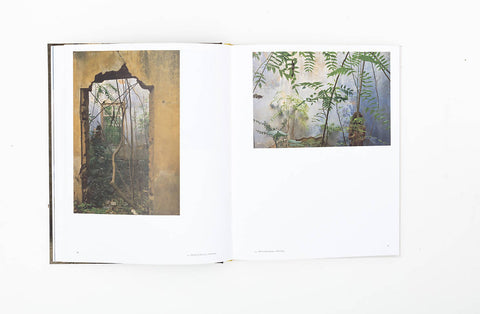 Abandoned Dwellings: A History of Beirut - Gregory Buchakjian