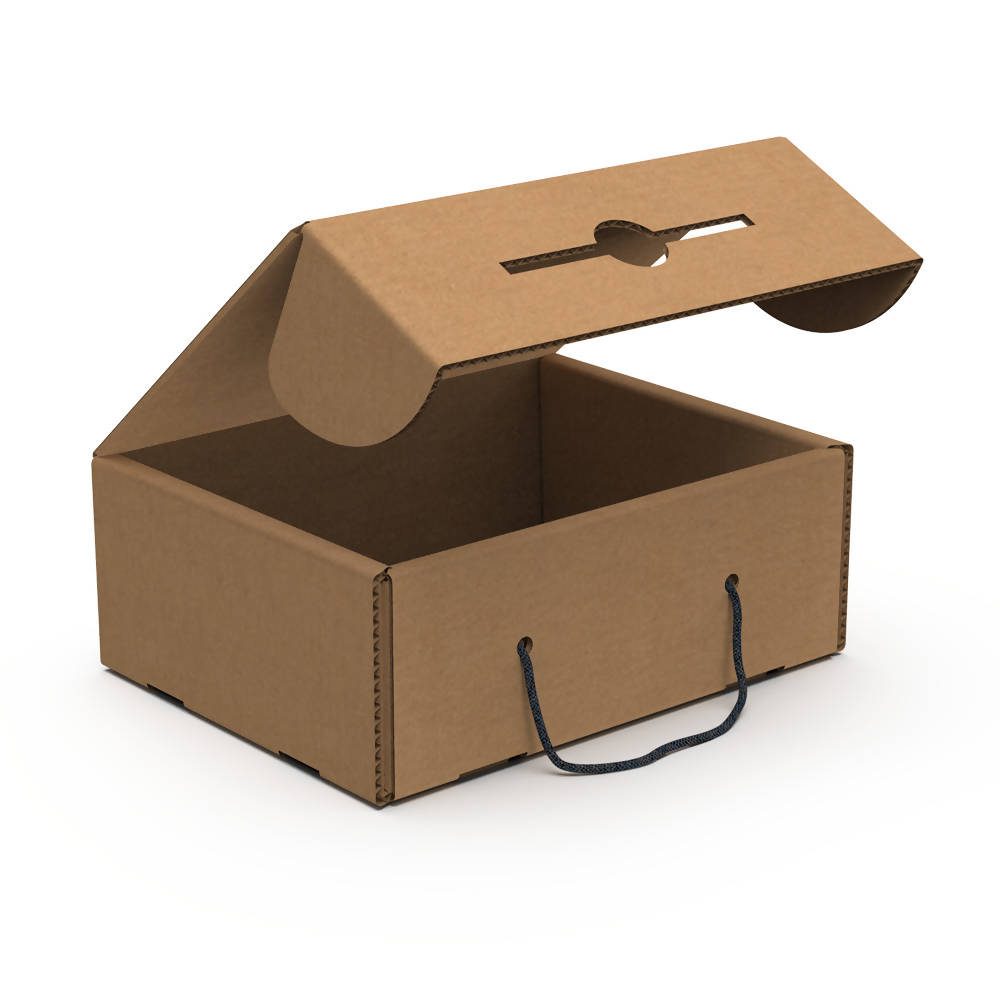 E-commerce Carry Box Large (Bundle of 5 pcs)