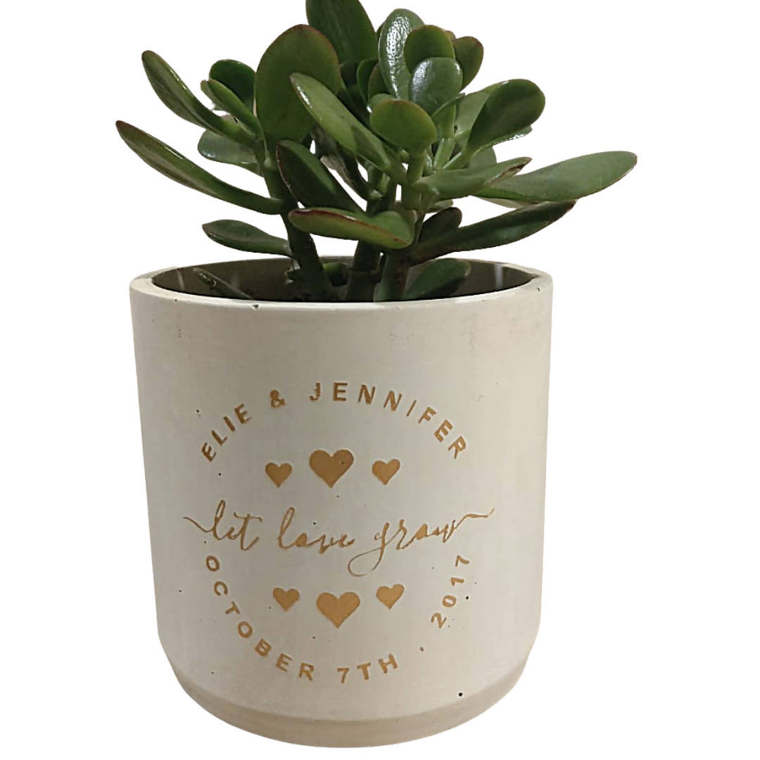 Calligraphy Concrete Planter - Large