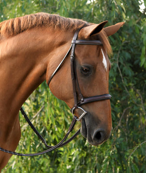 Red Barn Icon Hunter Bridle - ReRide Consignment