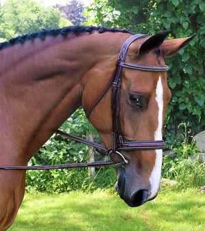 Black Oak Laurel Bridle - ReRide Consignment