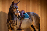 PS of Sweden Nirak Bridle - ReRide Consignment