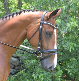 Black Oak Magnolia Dressage Bridle - ReRide Consignment