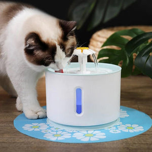 Cat licking water from cat water fountain