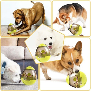 Many dogs playing with the Interactive Pet Treat Dispenser